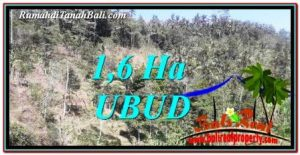 Beautiful PROPERTY LAND IN UBUD BALI FOR SALE TJUB748