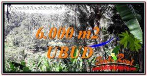 Magnificent LAND SALE IN UBUD TJUB750