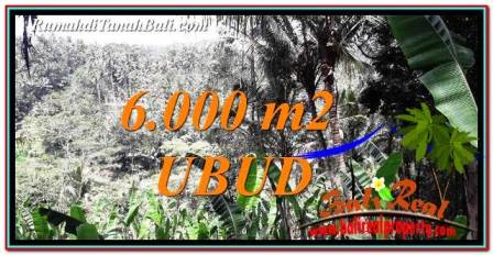 Magnificent LAND SALE IN UBUD TJUB750