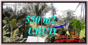 Beautiful LAND FOR SALE IN UBUD BALI TJUB751