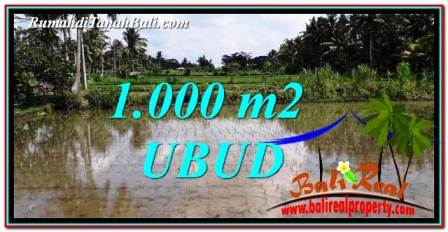 Affordable PROPERTY 1,000 m2 LAND FOR SALE IN Ubud Pejeng TJUB753