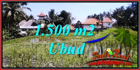 Affordable 1,500 m2 LAND FOR SALE IN Ubud Tegalalang TJUB744