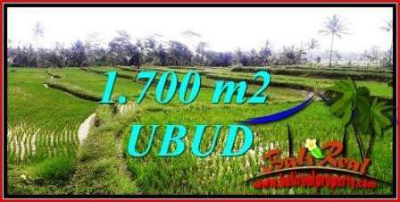 Beautiful PROPERTY Ubud Tegalalang 1,700 m2 LAND FOR SALE TJUB745