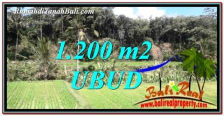 FOR SALE Beautiful 1,200 m2 LAND IN UBUD BALI TJUB746
