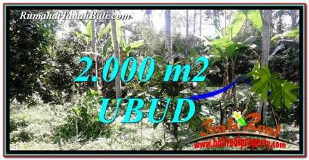 Exotic PROPERTY Ubud Tegalalang 2,000 m2 LAND FOR SALE TJUB747