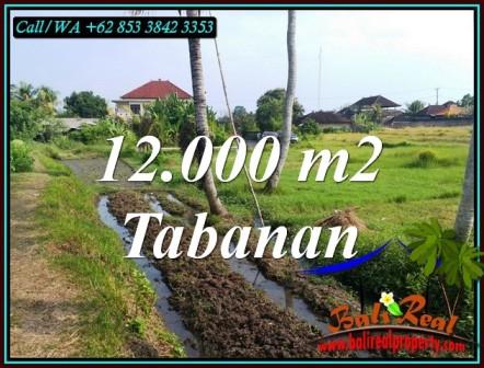 Affordable 12,000 m2 LAND SALE IN KERAMBITAN TABANAN TJTB502