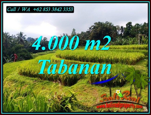 Affordable TABANAN BALI LAND FOR SALE TJTB499A