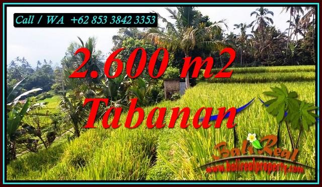 2,600 m2 LAND FOR SALE IN PENEBEL TABANAN BALI TJTB499B