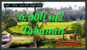 Magnificent PROPERTY LAND FOR SALE IN PENEBEL TABANAN BALI TJTB499C