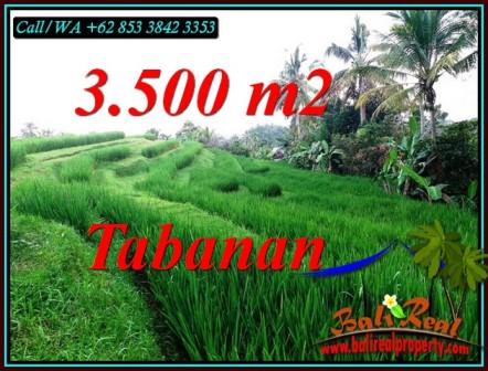 Exotic PROPERTY SELEMADEG TIMUR TABANAN LAND FOR SALE TJTB500