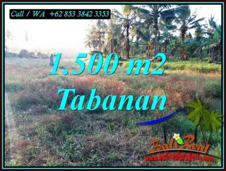 Beautiful PROPERTY 1,500 m2 LAND FOR SALE IN TABANAN TJTB497