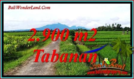 FOR SALE Exotic 2,900 m2 LAND IN SELEMADEG BALI TJTB484