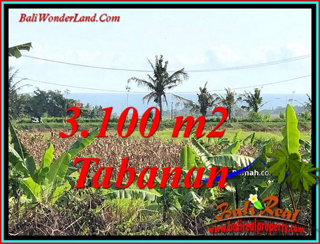 3,100 m2 LAND FOR SALE IN KERAMBITAN TABANAN BALI TJTB485
