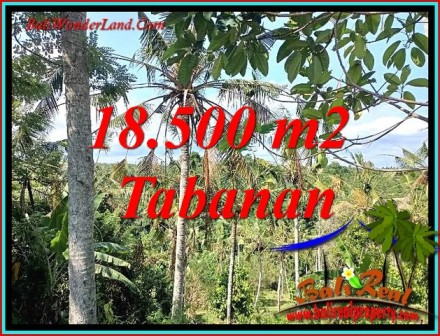 FOR SALE Beautiful LAND IN TABANAN BALI TJTB487