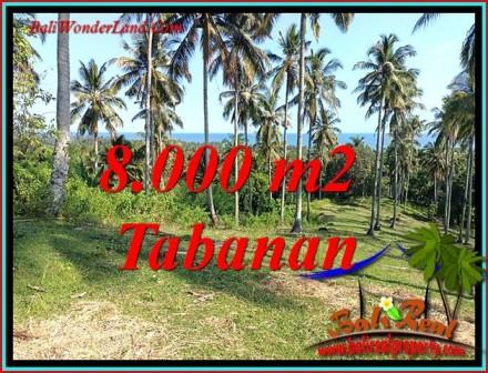 FOR SALE Magnificent PROPERTY LAND IN SELEMADEG BARAT TJTB488