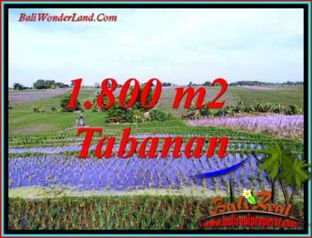 Magnificent PROPERTY 1,800 m2 LAND SALE IN TABANAN TJTB491