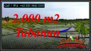Exotic TABANAN BALI LAND FOR SALE TJTB493