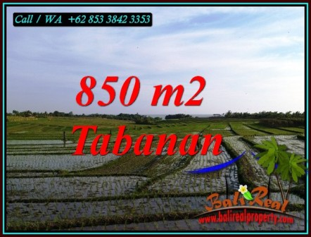 Magnificent PROPERTY LAND IN SELEMADEG TIMUR BALI FOR SALE TJTB494