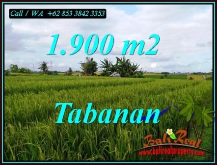 Beautiful LAND IN SELEMADEG TABANAN FOR SALE TJTB495