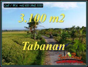 Exotic PROPERTY SELEMADEG TABANAN LAND FOR SALE TJTB496