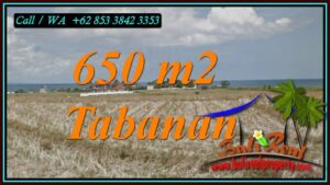 Exotic 650 m2 LAND FOR SALE IN SELEMADEG TABANAN BALI TJTB453
