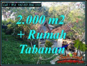 Cheap property LAND IN SELEMADEG TABANAN FOR SALE TJTB455