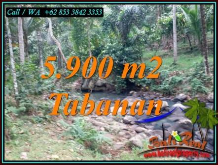 Affordable TABANAN BALI LAND FOR SALE TJTB458