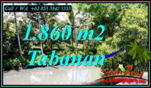 Exotic LAND SALE IN TABANAN BALI TJTB467