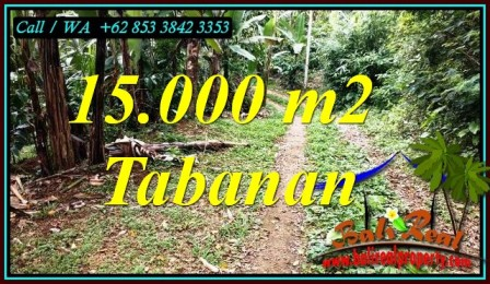 FOR SALE Affordable 15,000 m2 LAND IN SELEMADEG BARAT TJTB469