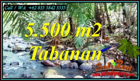 Beautiful LAND IN SELEMADEG FOR SALE TJTB470