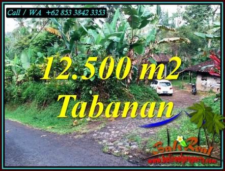 FOR SALE Cheap property 12,000 m2 LAND IN SELEMADEG BARAT BALI TJTB475