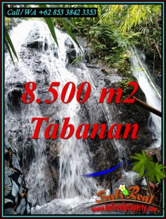 LAND IN TABANAN BALI FOR SALE TJTB478
