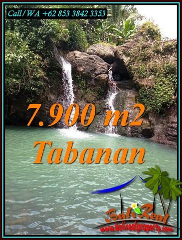 7,900 m2 LAND SALE IN SELEMADEG BARAT TJTB479