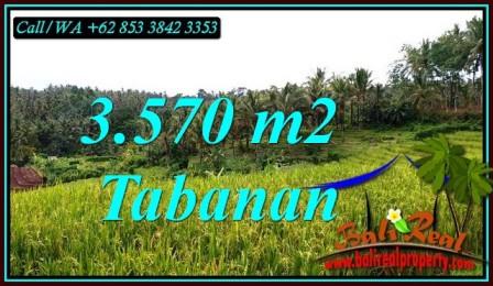 Affordable 3,570 m2 LAND FOR SALE IN SELEMADEG TIMUR BALI TJTB482