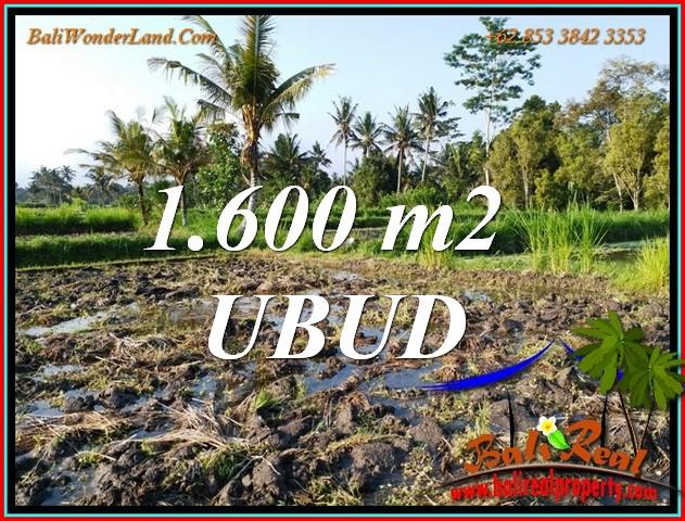 Exotic 1,600 m2 LAND in Tampaksiring BALI for SALE TJUB807