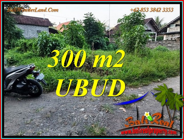Magnificent PROPERTY 300 m2 LAND for SALE in UBUD TJUB809