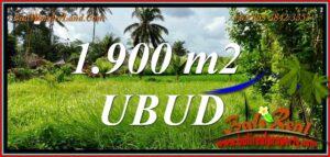 Magnificent 1,900 m2 LAND SALE in Tampaksiring BALI TJUB811