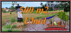 Exotic PROPERTY LAND for SALE in Tampaksiring BALI TJUB812